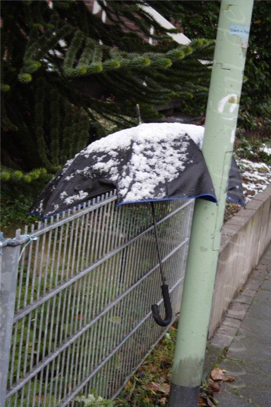 Schirm